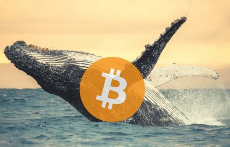 Someone Just Transferred $1.15 Billion (0.4% Of Total Bitcoins) for $3.6 Fees