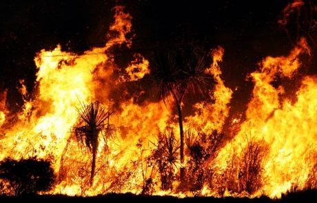As Australia Burns, Binance Donates $1 Million Worth Of BNB