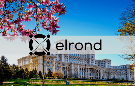Regulation First: Elrond Aims to Acquire an e-Money Licensed Company in Romania