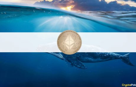 Buying Spree: The Top 10 Ethereum Wallets Now Own 20.58% of ETH's Supply