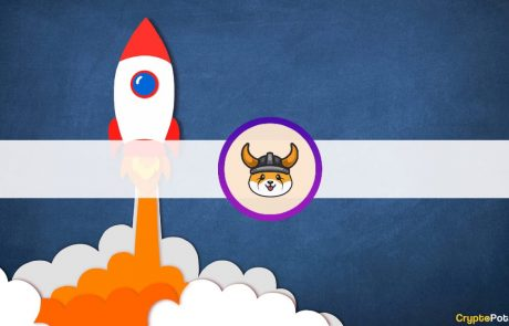 Elon Musk Bought a Shiba Inu Dog; New Dogecoin Copycats Skyrocketed as a Result