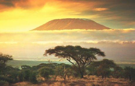 How Local Cryptocurrencies Help Kenyans Survive the Coronavirus Crisis