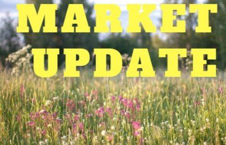 Market Update Report July.31