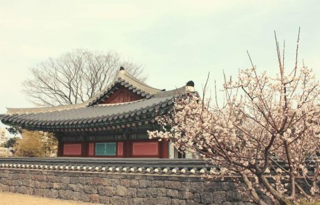 Survey: Most South Koreans Approve the Upcoming 20% Tax on Crypto Gains