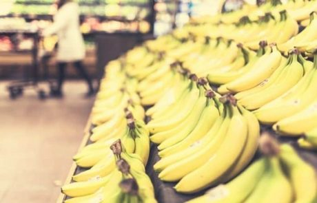 US DOJ After $7.2 Million Crypto Ponzi Banana Fund