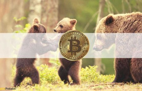 Bitcoin Price Dumped $2K as Crypto Market Cap Loses $100B (Market Watch)