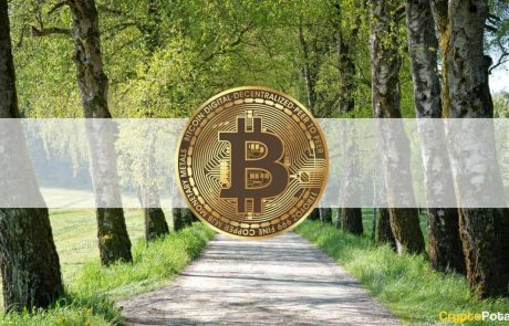 Bitcoin Recovers After 3rd Weekly Dip to $40k: DYDX Skyrockets Another 30% (Market Watch)