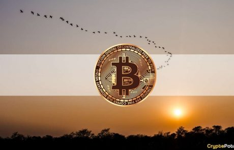 Macro Bitcoin Accumulation Continues as Price Reclaims $45K