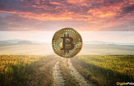 Analysis: Bitcoin is Undervalued, 2021 Bull Run Hasn't Topped Yet