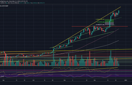 Bitcoin Just Recorded Another All-Time High: Is $25K Incoming? (Updated BTC Price Analysis)