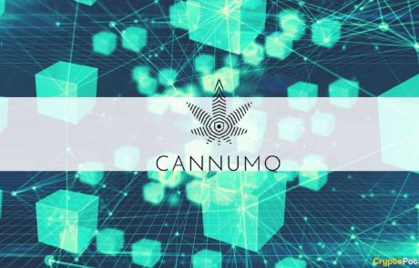 Cannumo Bridges the Worlds of Crypto and Cannabis