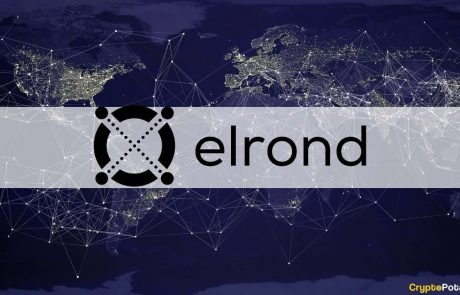 $1.72M Staked Amid Community Testing for Maiar, Elrond Network's New Decentralised Exchange