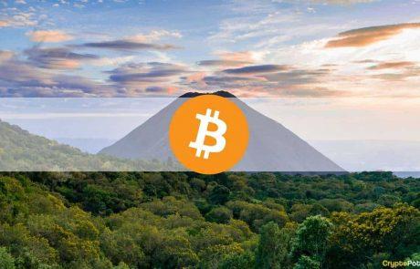 Volatile Week Following El Salvador's Bitcoin Adoption and Plunge Below $43K: The Weekly Crypto Recap