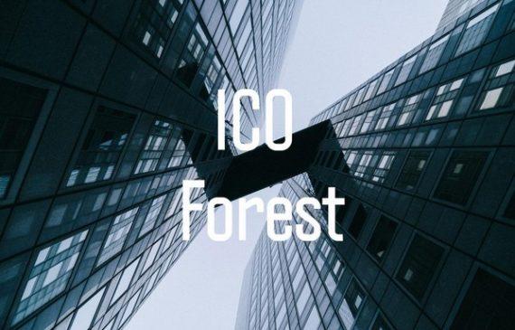 10 קריטריונים חובה לפני השקעה בגיוס ICO