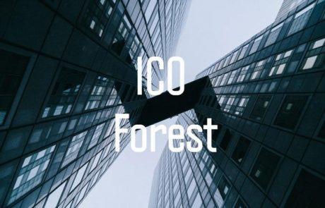 इनिशियल कॉइन ओफ्फ़रिंग (आईसीओ) में निवेश के मूल्यांकन के लिए 10 कुंजी ICO
