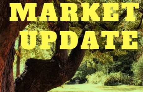 Market Update Report June.19