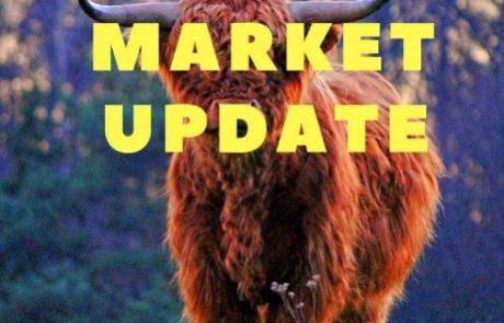 Market Update Report Feb.14