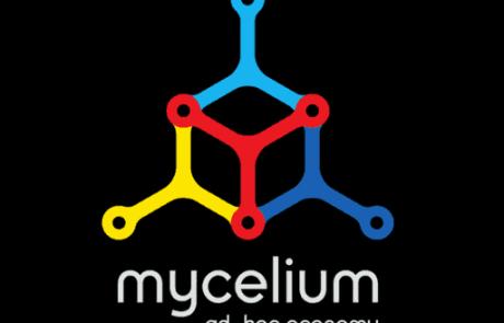 मैसीलिअम वॉलेट- सम्पुर्ण गाइड Mycelium