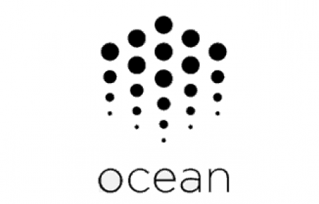 IEO's Nightmare: Ocean Protocol Lost 80% Following Its IEO On Bittrex
